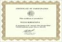 Сертификат участника проекта